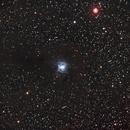 Iris Nebula,                                Loran Hughes