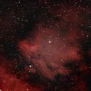 Pelican Nebula,                                gmehal