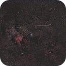 Komet Jacques im Sternbild Schwan,                                Wolfgang Zimmermann