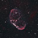 NGC 6888 Crescent Nebula SHO,                                David Newbury