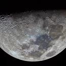 April First Quarter Moon,                                Shannon Calvert