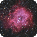 C 49 - Rosette Nebula with Open Cluster NGC 2244,                                Rainer Raupach