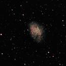 M-1, The Crab Nebula,                                Ray Morris