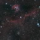 Open Clusters in the Seagull nebula,                                BrettWaller