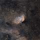 Sharpless 101 The Tulip Nebula in Hubble palette,                                Salvatore Cozza