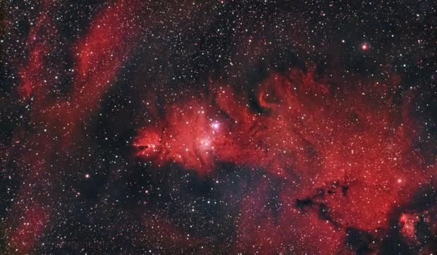 NGC 2264 Cone Nebula,                                Jürgen Ehnes