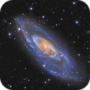 M106 - A Deep View,                                Jason Guenzel