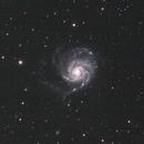M101 Whirpool Galaxy,                                Aldo Bassi