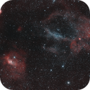 The Bubble and Lobster Claw Widefield,                                mackiedlm
