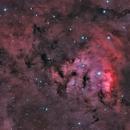 NGC 7822,                                Jan Eliasek