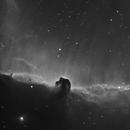 IC434 Horsehead Nebula in H-alpha,                                Barczynski
