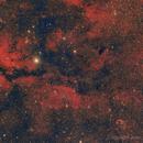 Gamma Cyg  Nebula y Crescent,                                comiqueso