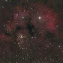 NGC7822 2019,                                antares47110815