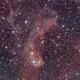LBN437, a dusty fish dancing around clouds of hydrogen,                                Jari Saukkonen