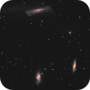 Leo Triplet and faint Tidal Tail,                                Roland Schliessus