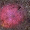 IC1396 Komplex,                                Alexander Grasel
