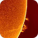 Solar prominences,                                Robert Schumann