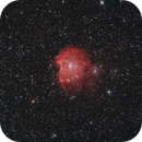 Cabeza de Mono NGC-2174,                                Julio