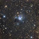 NGC7129,                                Filip Lolic