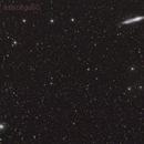 cometa C/2012 K1 Panstarrs del  13/12/2014,                                Rolando Ligustri