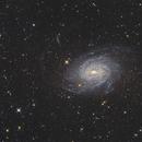 NGC 6744,                                Simon
