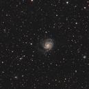 M101 Pinwheel Galaxy,                                Joey Conenna