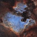 North America Nebula & Pelican Nebula,                                Chris (@astro_addiction)