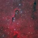 IC 1396,                                Bart Delsaert