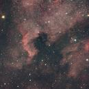 NGC7000 & IC5070 Widefield,                                Dave