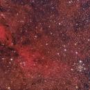IC 1311 - open star cluster in Cygnus,                                Michael S.