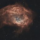 Sh2-261 - Lower's Nebula,                                Roman Pearah