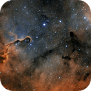 Elephant's Trunk Nebula,                                nicolabugin