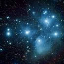 M45 Pleiades,                                Peter Bruchter