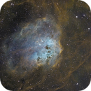The Tadpoles of IC 410 and NGC 1893 cluster in SHO,                                Jean-François Dou...