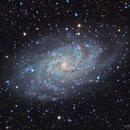 M33 from Negev Desert,                                Leo Shatz