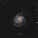 Pinwheel Galaxy (M101),                                KojiTajima