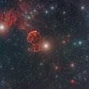 IC443 + NGC2174,                                Federico Bossi