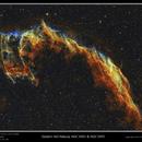 Eastern Veil Nebula -- Bi-Color,                                rflinn68