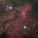 IC 5070 - Pelican Nebula,                                igorb