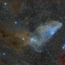 Blue Horsehead,                                Pleiades Astropho...