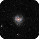 M83 - Southern Pinwheel Galaxy (LRGB) from Bortle 9,                                Ariel Cappelletti