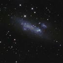 NGC 2366,                                Frank Colosimo