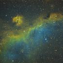 IC2177 SEAGULL,                                Turki Alamri