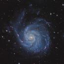 M101- Pinwheel Galaxy,                                lefty7283