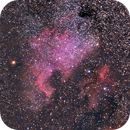 NGC 7000 nebulosa Nord America,                                Giuseppe Nicosia