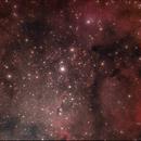 IC1396,                                william lequin