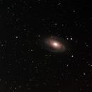 M81,                                JoeRez