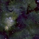 NGC 2264, the Cone Nebula & Christmas Tree Cluster, SHO,                                Stephen Garretson