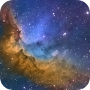 The Wizard Nebula in Cepheus. SHO tone mapped,                                Pat Rodgers