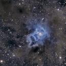 IRIS NEBULA, NGC 7023,                                Aurelio55